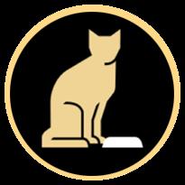 Chat devant une gamelle