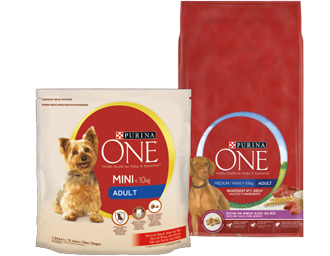 Purina One - Chiens